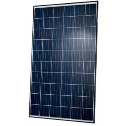 Solární panel Q-CELLS 285Wp POLY